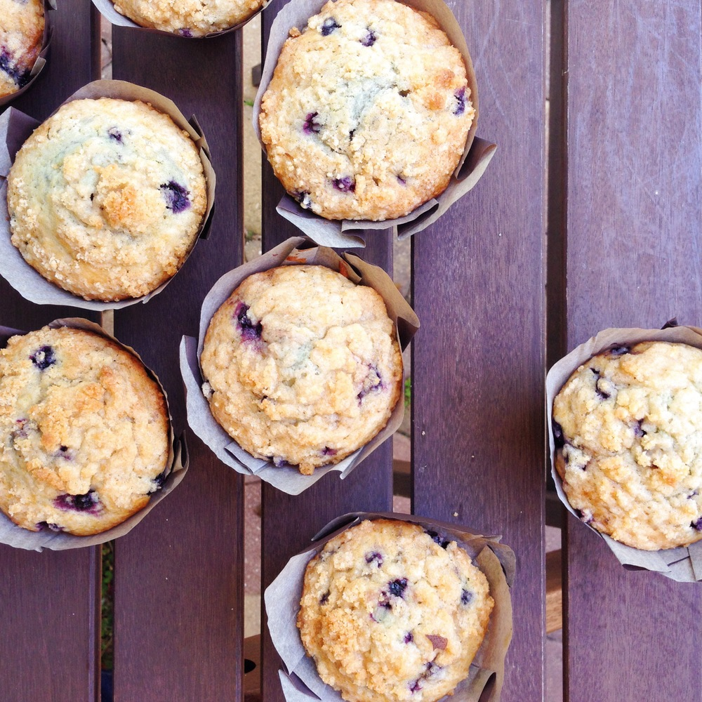 wild_blueberry_muffin_01.JPG