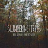 Slumbering Trees