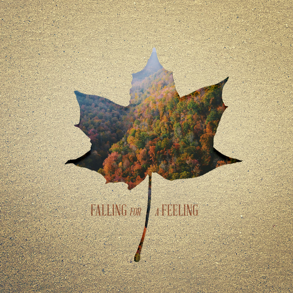 fallingforafeeling.jpg