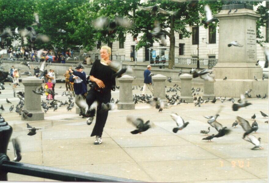Chasing pigeons at Trafalgar Square.