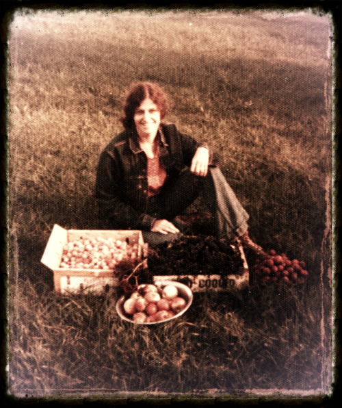 A day of wild harvest in the 70's