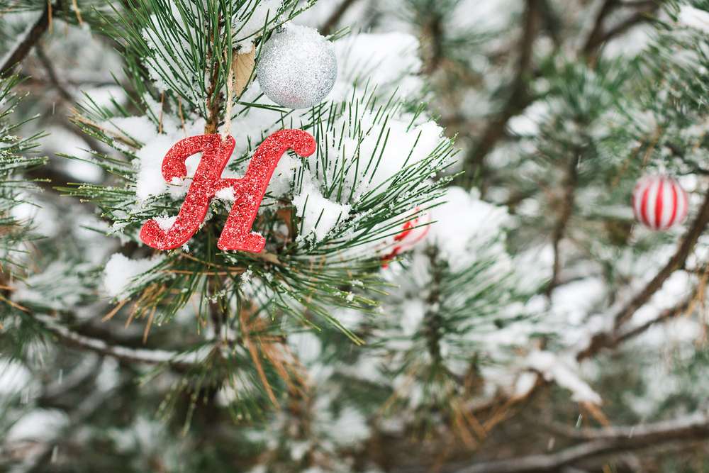 Oldani-Photography-St-Louis-Forest-Park-Engagement-Photos-Snow_20141116_16373102.jpg