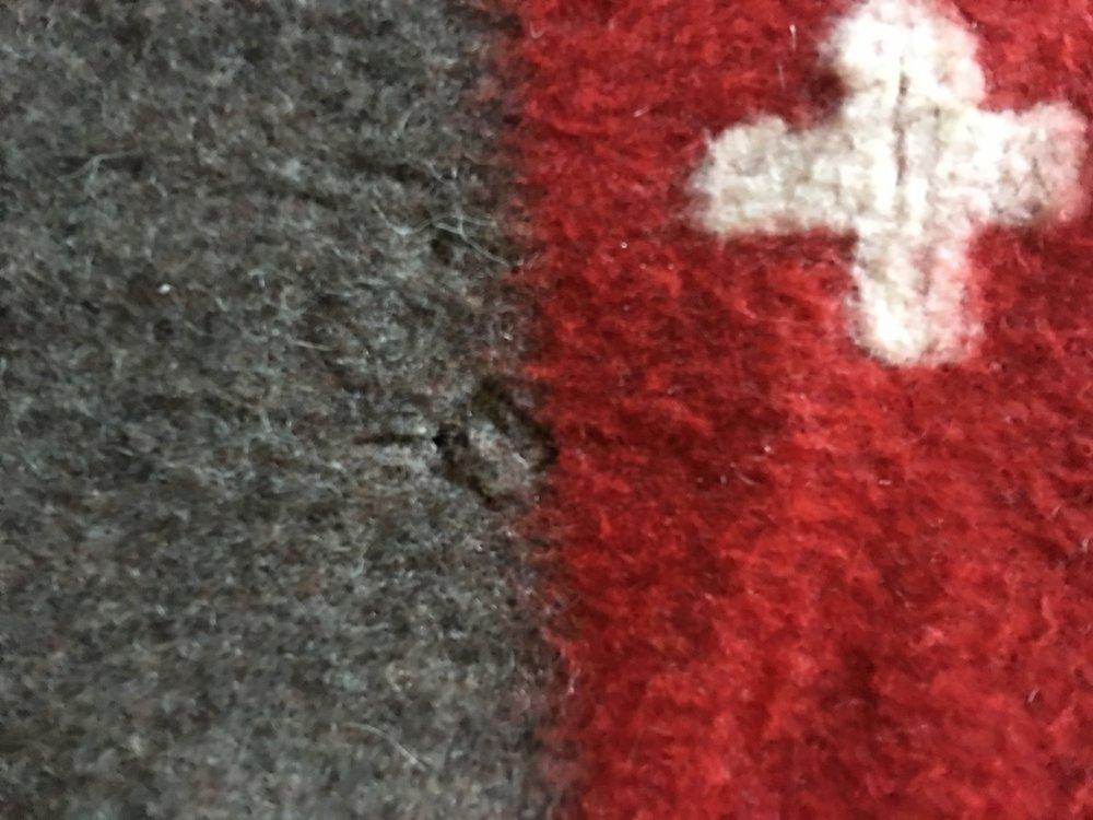 Thin fabric - Moth?