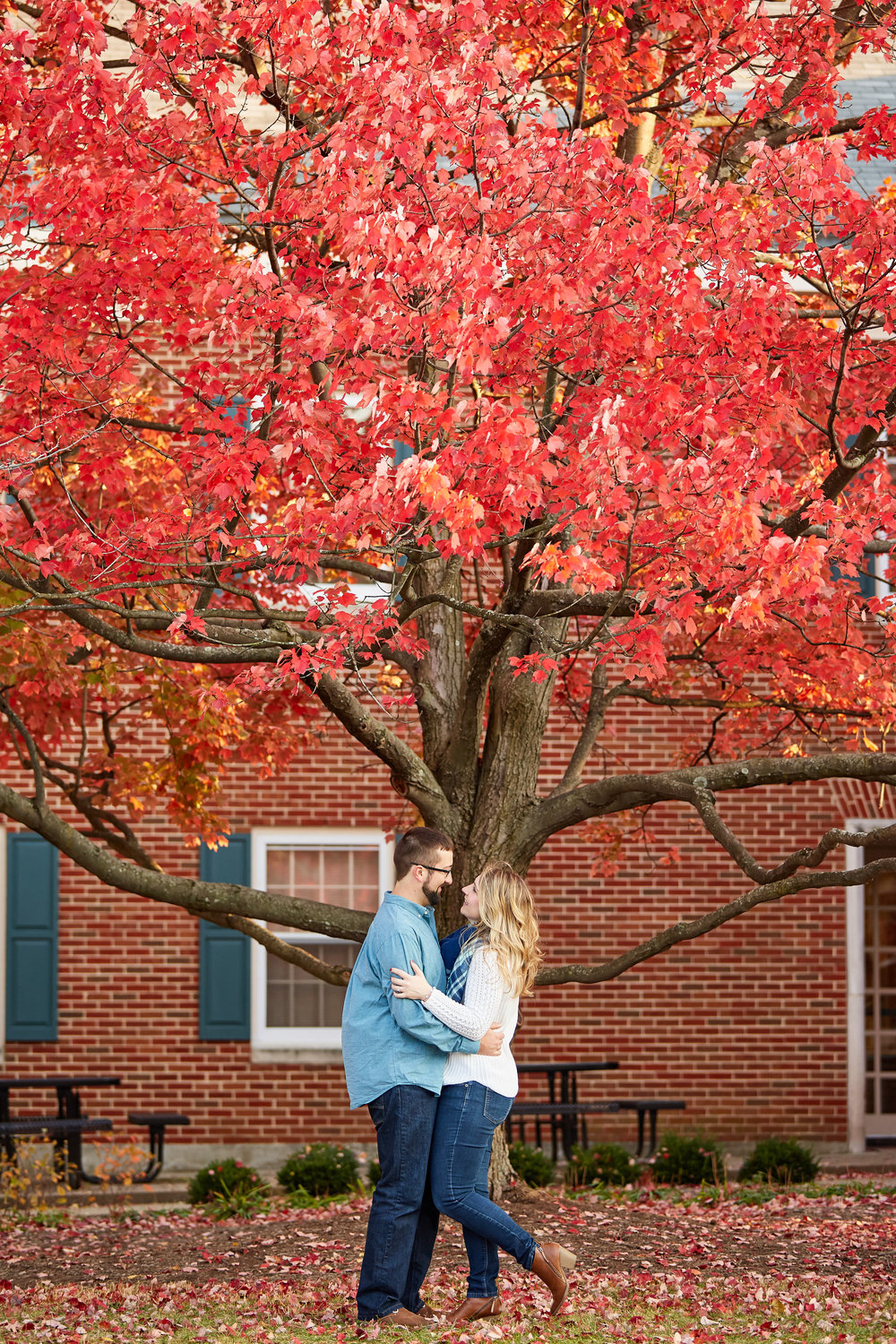 University of Kentucky Lexington Campus Alumni Engagement Photos by St Louis Wedding Photographers Oldani Photography 0 058.jpg