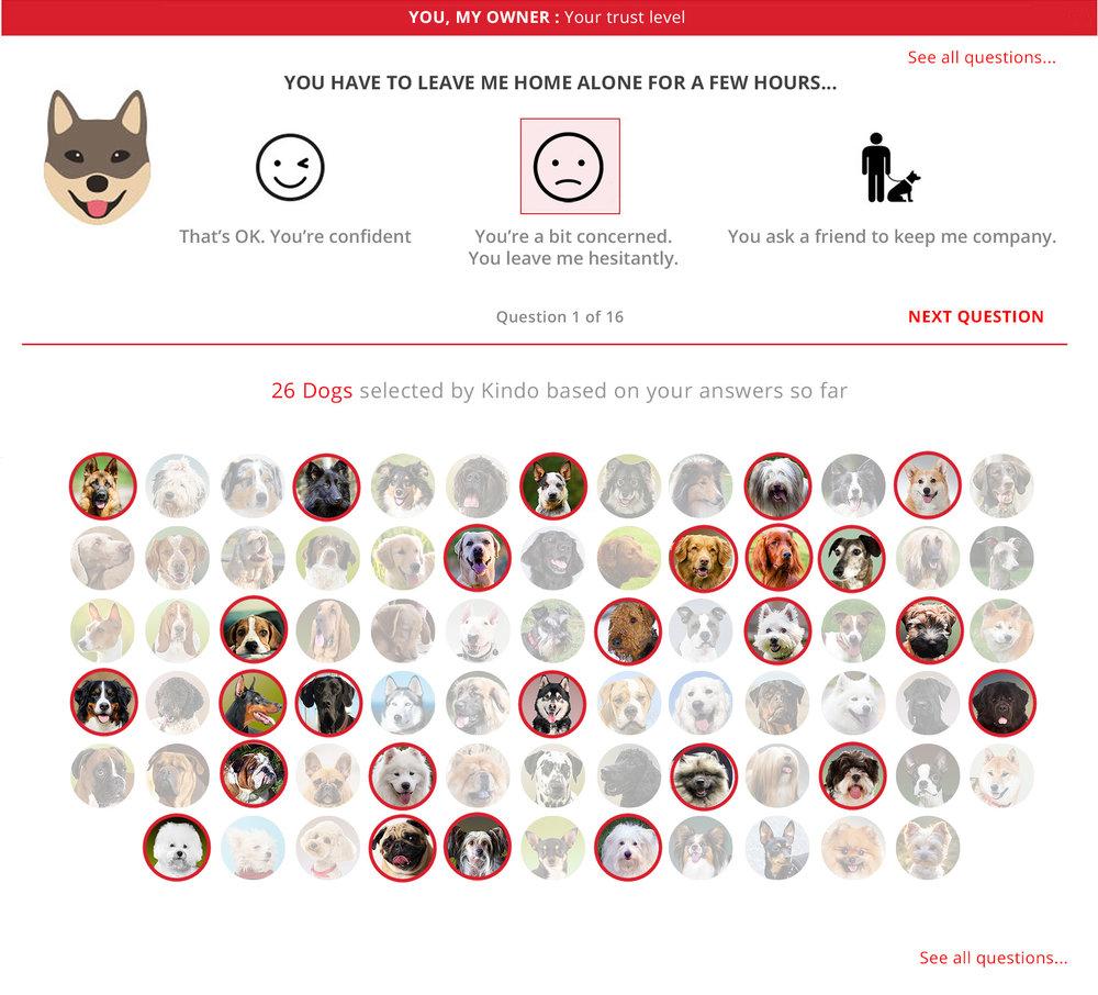 UX DESIGN FOR DOG QUIZ