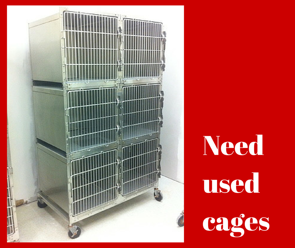 Cages Kennel Equipment Used Vet Equipment