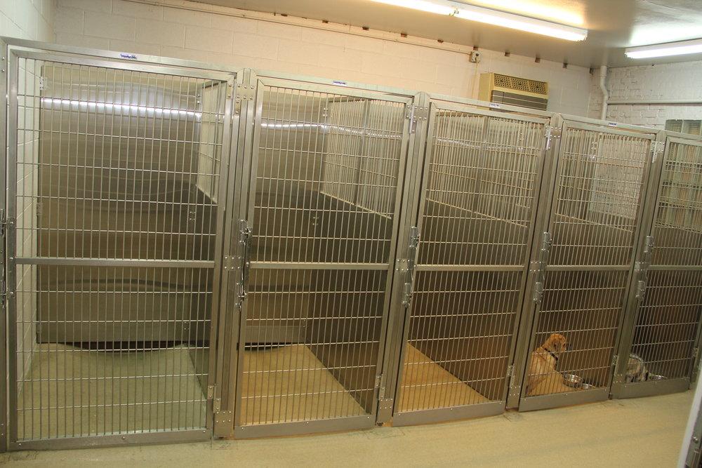 Shor line kennels for sale