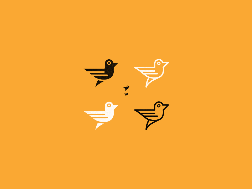 Express-four-birds-960.png