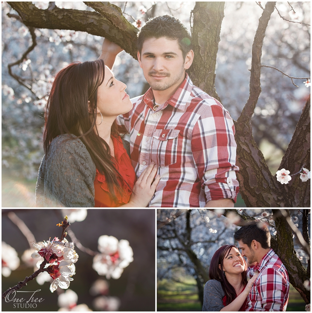 Engagement Photos | St. Catharines, Ontario