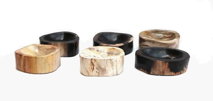 Petrified Wood Bowls
