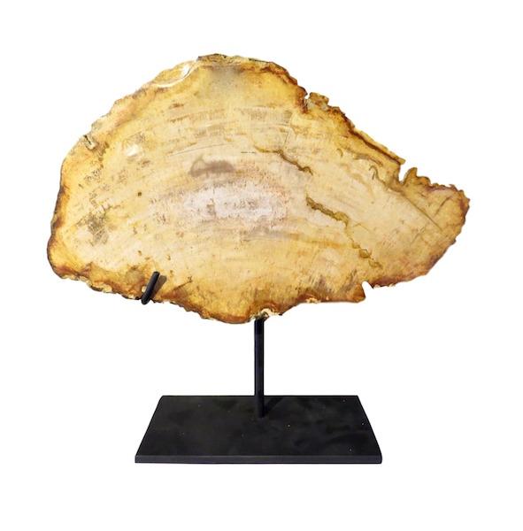 Petrified Wood Slice on Iron Stand  11x3x13h +/-  VO457AA