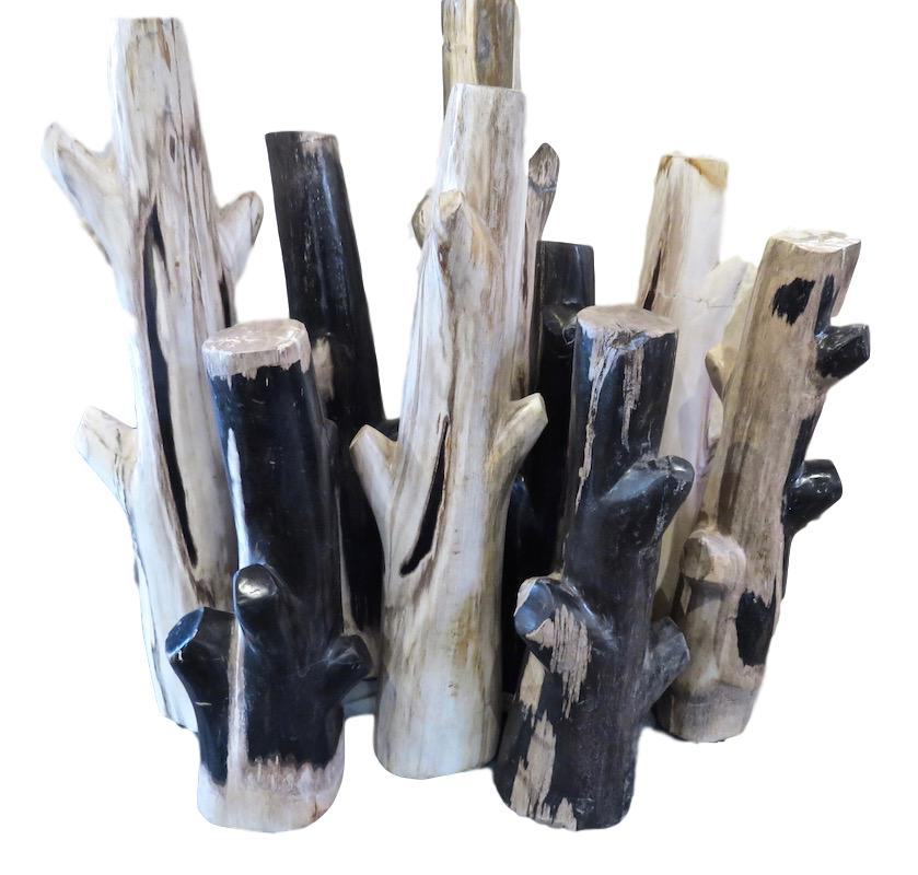"Petrified Wood Branches  12""-16""h  VO477,   16-20""h  VO477.1"