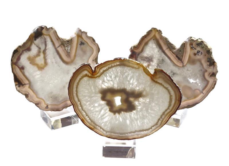 Agate Slice on Acrylic Base   7x3x12h +/-   VOAB11AA