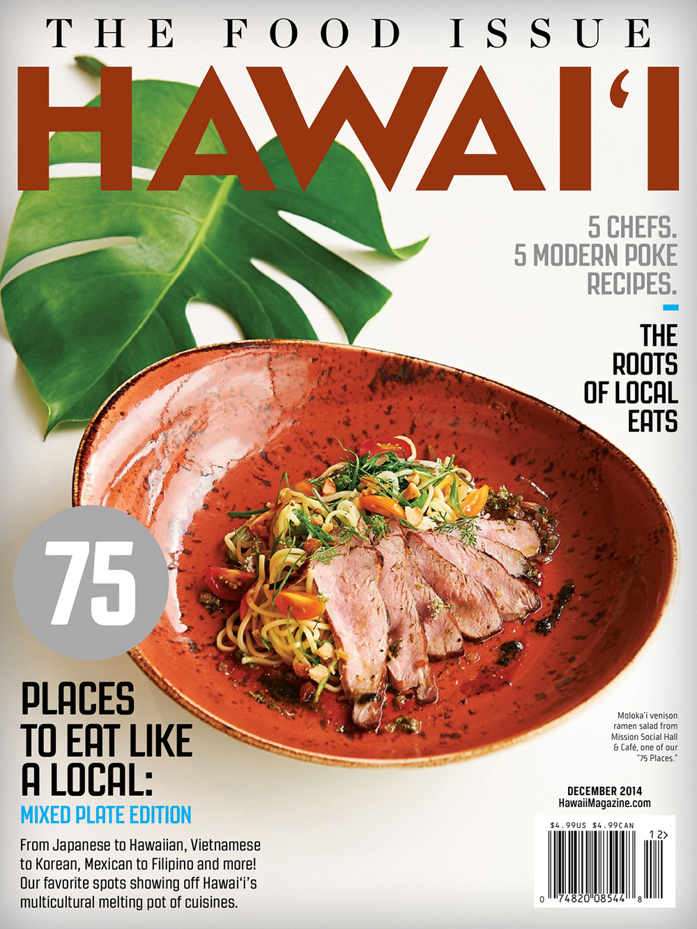 HAWAII Magazine    ©   2013-2016 Steve Czerniak