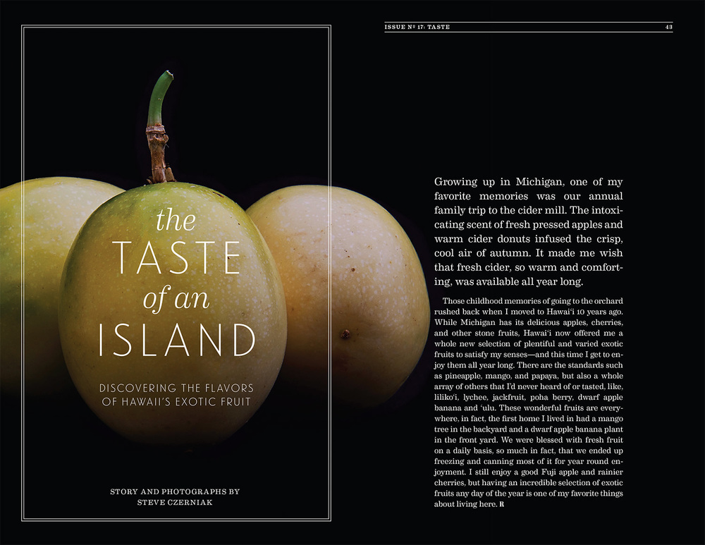 Remedy Quarterly Issue No. 17: Taste    ©   2013-2017 Steve Czerniak