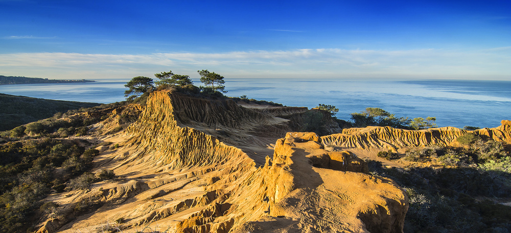 A great shot of the Torrey Pines Natural Reserve from Flickr user Bill Gracey.
