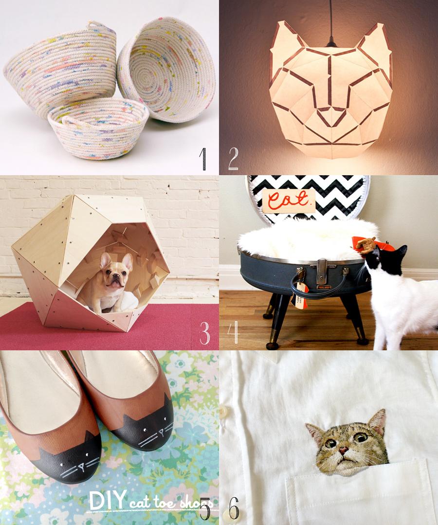 CatDIYscoll.jpg