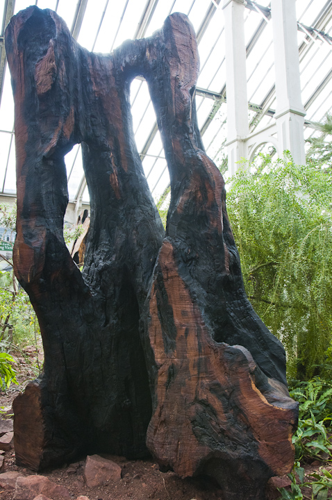 Kew_Gardens_SML_020812_008.jpg
