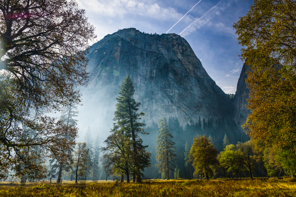 Misty Morning on Yosemite Valley.jpg