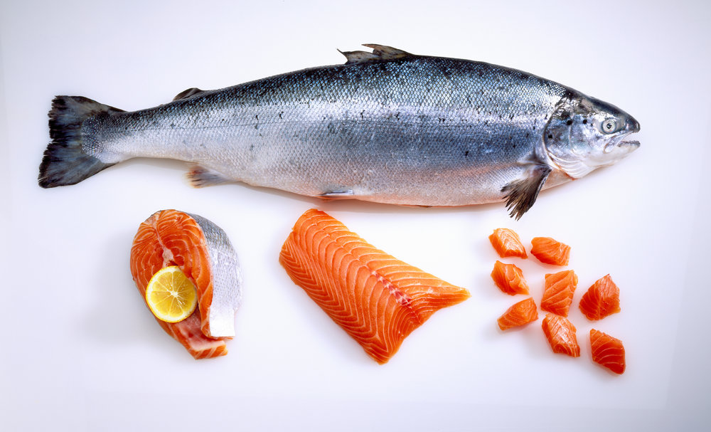 Salmon Weekends at 8Q.jpg