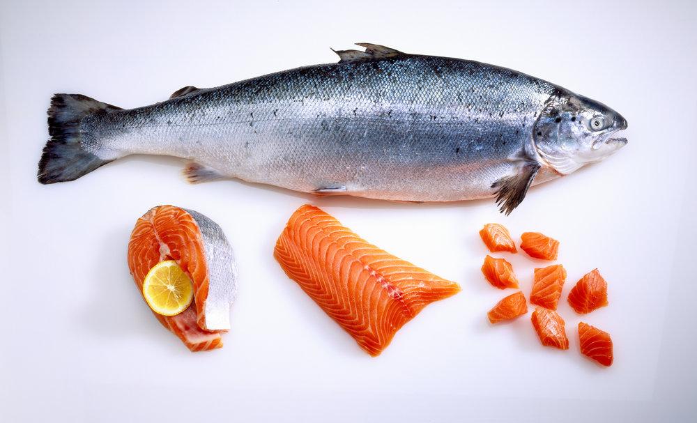Salmon Weekends at 8Q.jpg