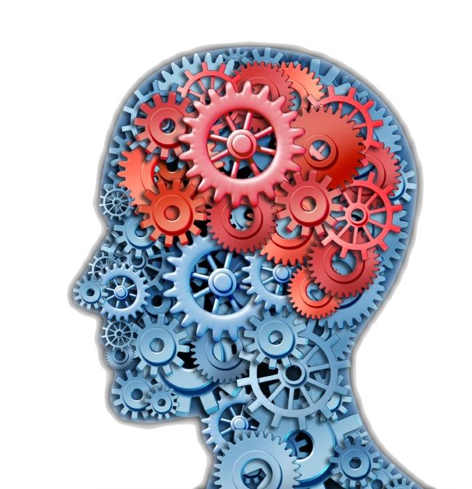 mind_brain_gears_white_shadow.jpg