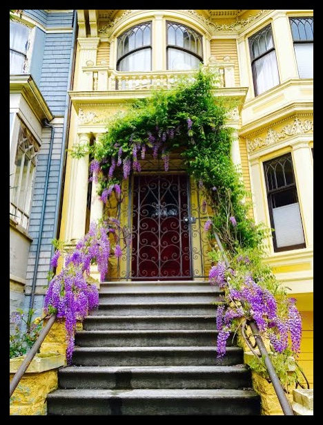 San Francisco's architecture in my neighborhood.
