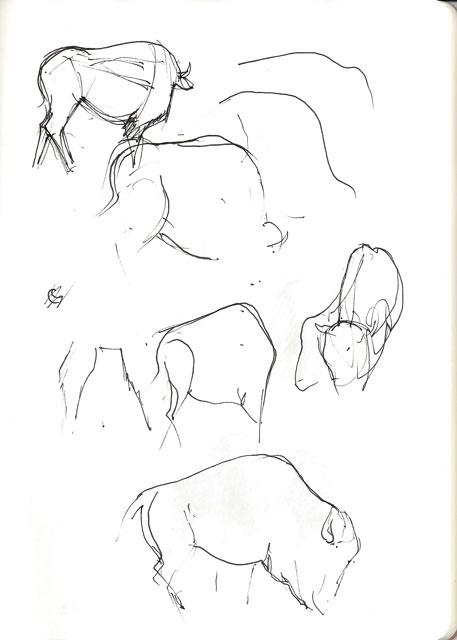 Pigma micron pen sketch