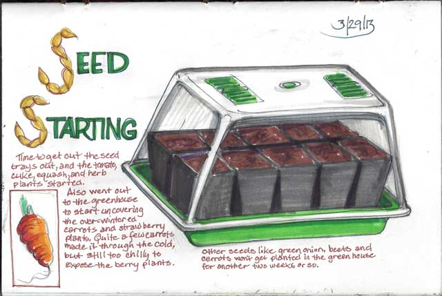 The seeds I planted have sprouted, so I need to do another page.