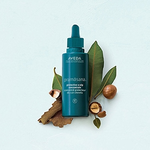 Pro-biotic scalp concentrate