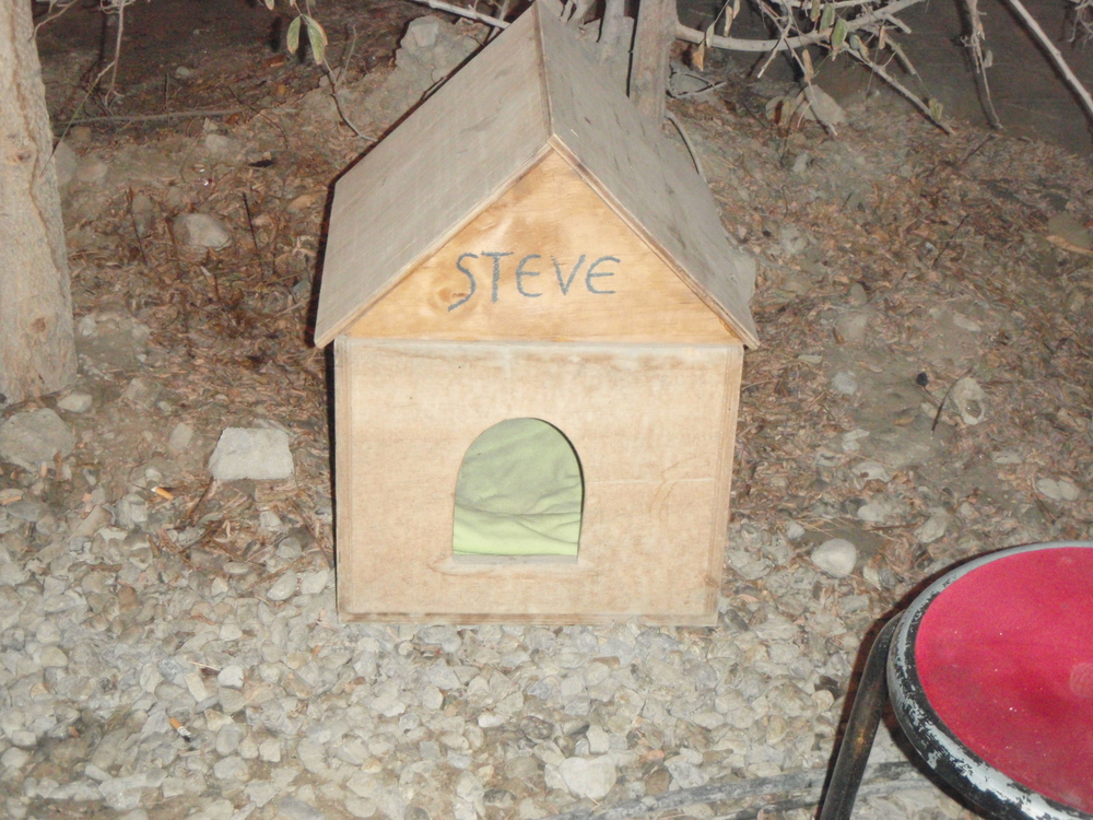 Yes, a dog-house with my name on it.  Behind the container/dorm where we stayed while in Kabul in Dec 2007