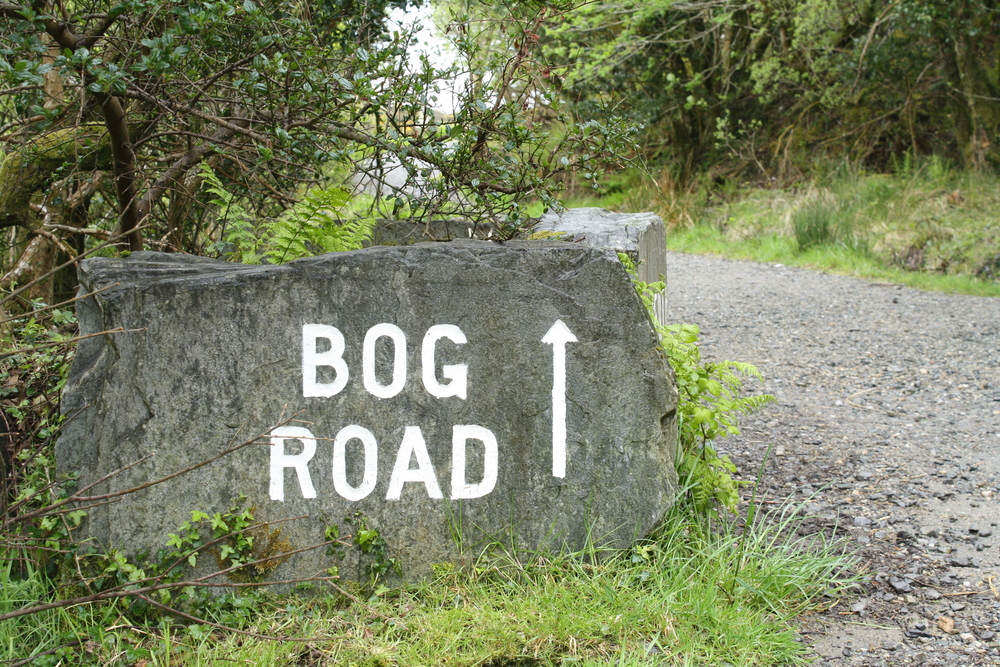 Bog Road in Connemara National Park