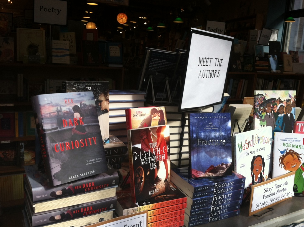 Our books on display at Malaprops Bookstore in Asheville NC