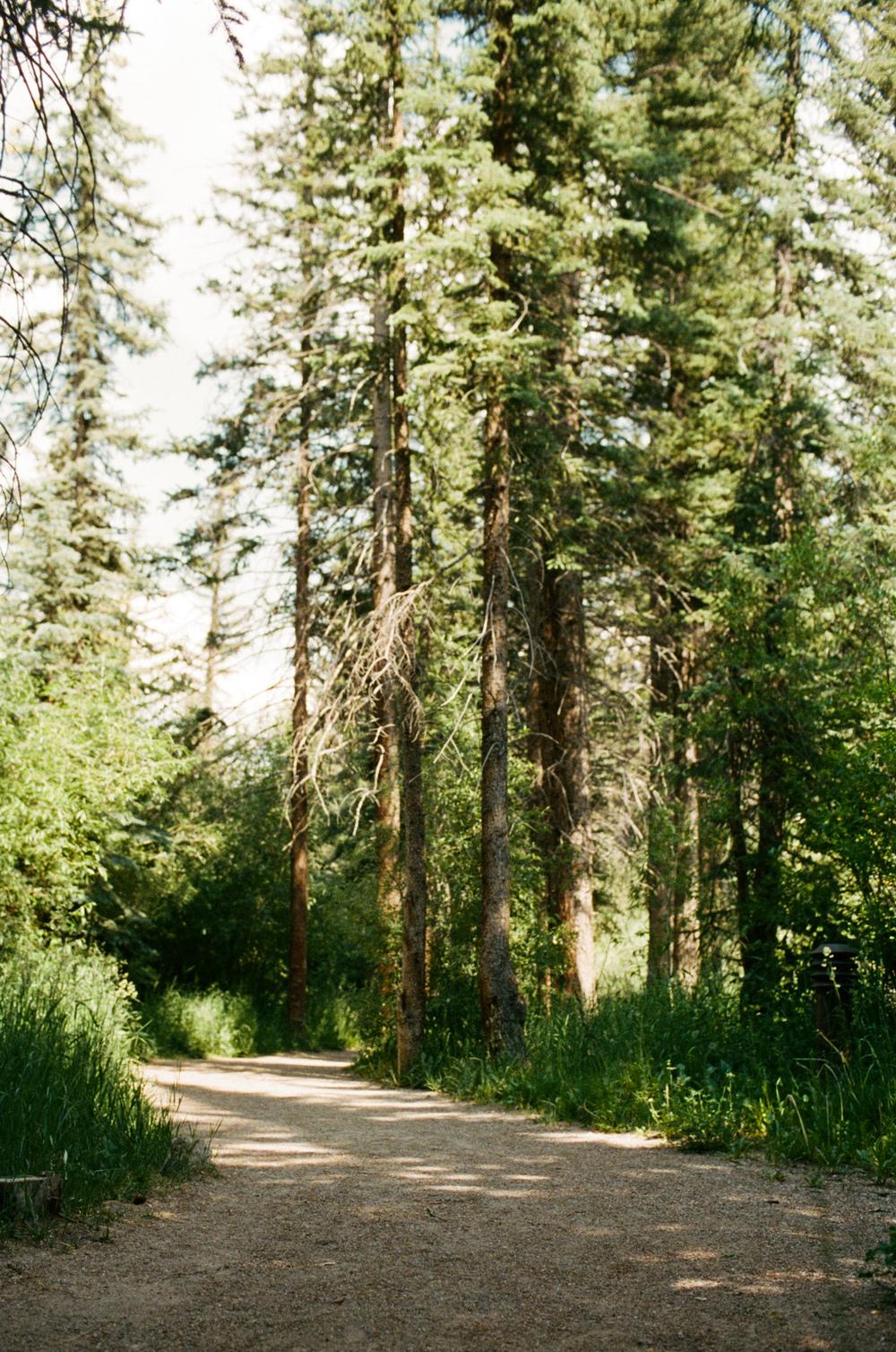 Colorado Film-000083490023.jpg