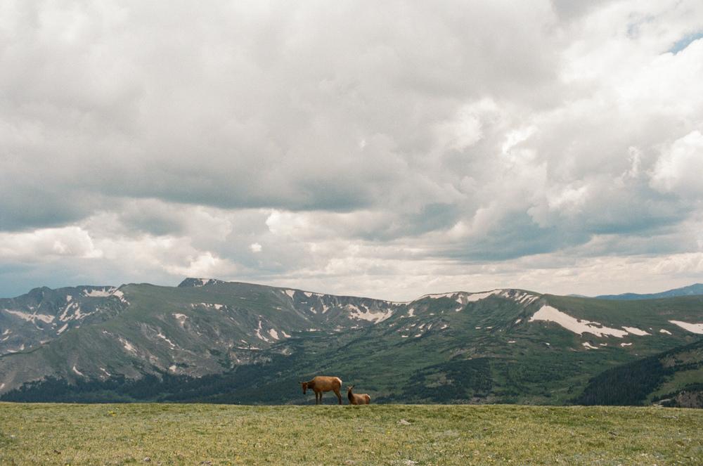 Colorado Film-000083490029.jpg