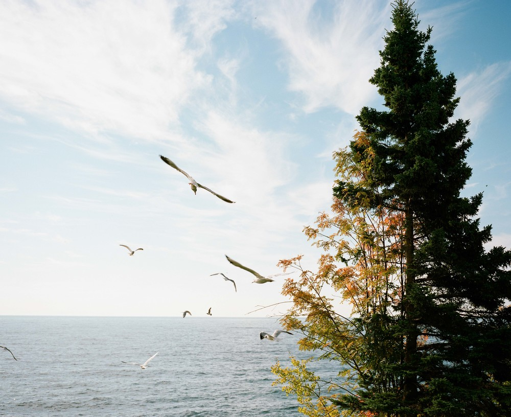 North Shore Film-31.jpg