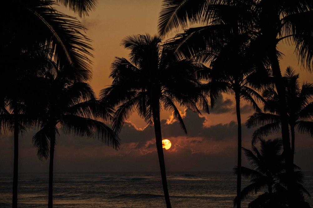 JAH4WW-Helping Heroes Hawaii--6379.jpg