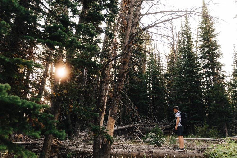 Beehive Basin_Montana_Russell Heeter Photography-6.jpg