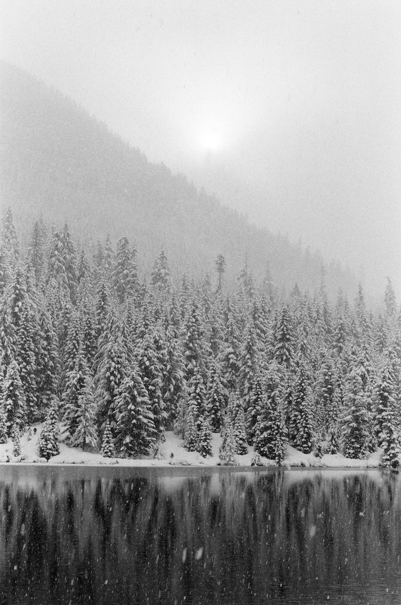 Vertical Snow Covered Trees and Mountain Reflection with Sun_web.jpg