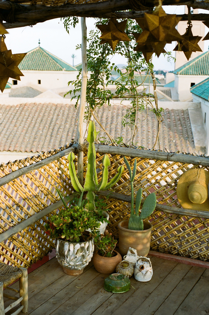 Cactus Corner and 3-D Stars on Roof Deck at Riad Jardin_web.jpg