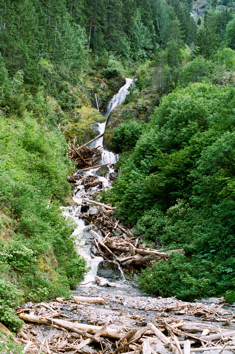 Waterfall off side of road_Logs at base_Cascades_web.jpg