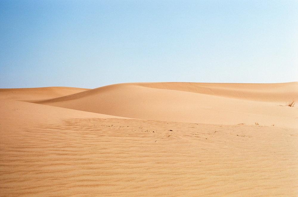Sand Dune Sahara 004_web.jpg