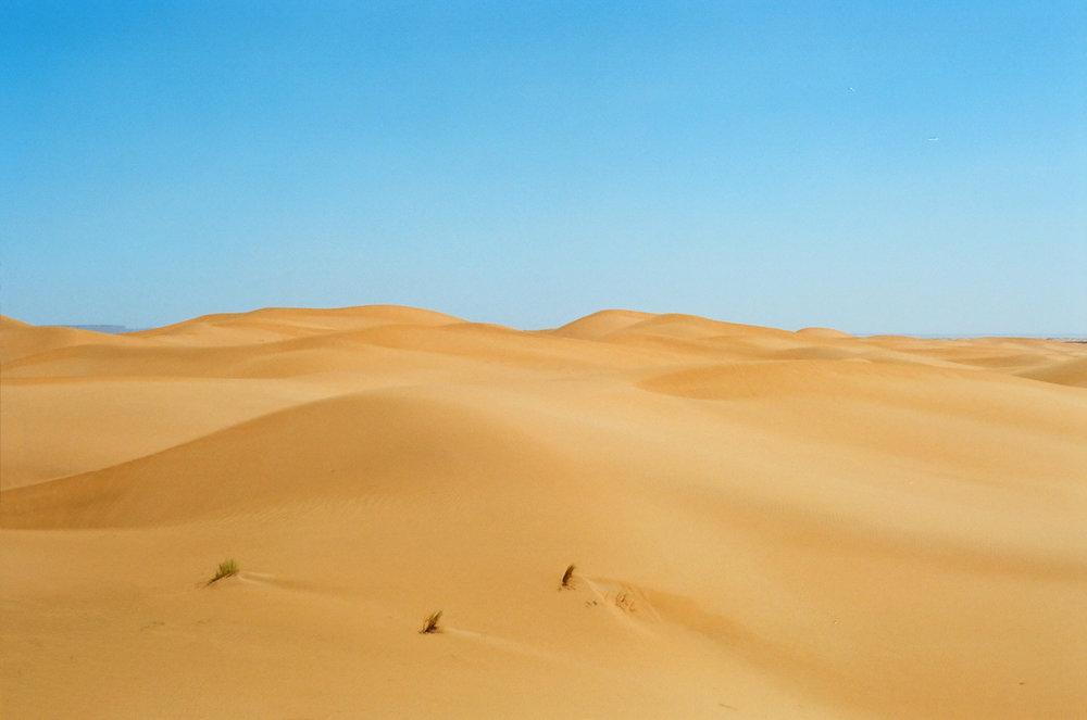Sand Dune Sahara 007_web.jpg