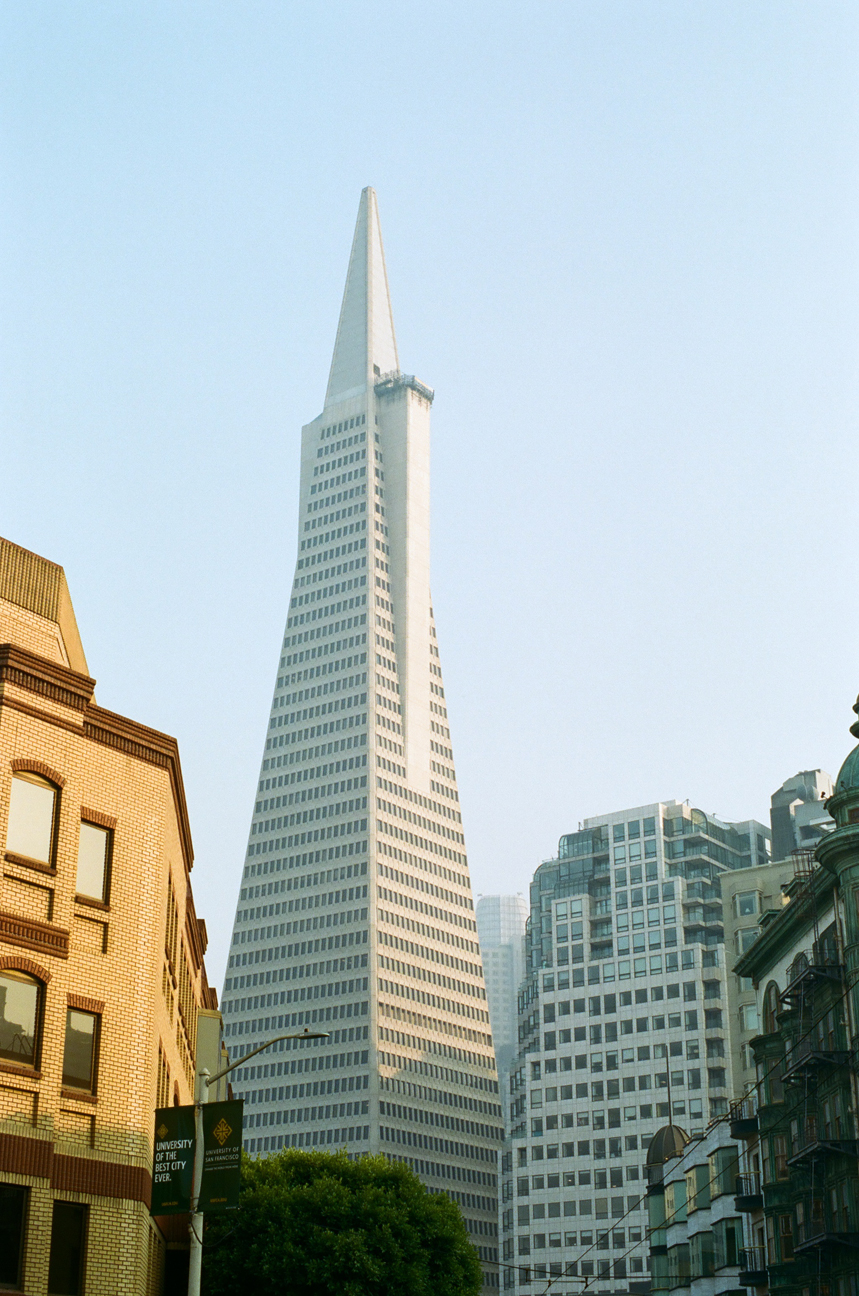 Transamerica Pyramid with other buildings_web.jpg