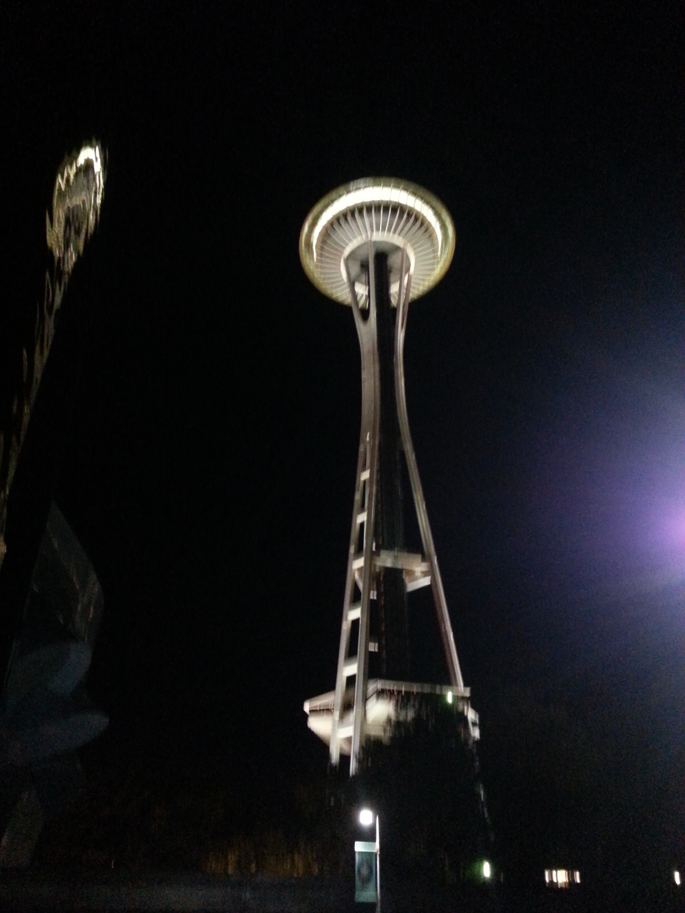 Seattle at night. (Photo: M. Zimmerman, 2012)
