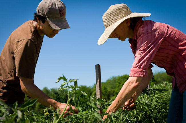 new entry sustainable farming project Learn about working at new entry sustainable farming project join linkedin today for free see who you know at new entry sustainable farming project, leverage your professional network, and get hired.