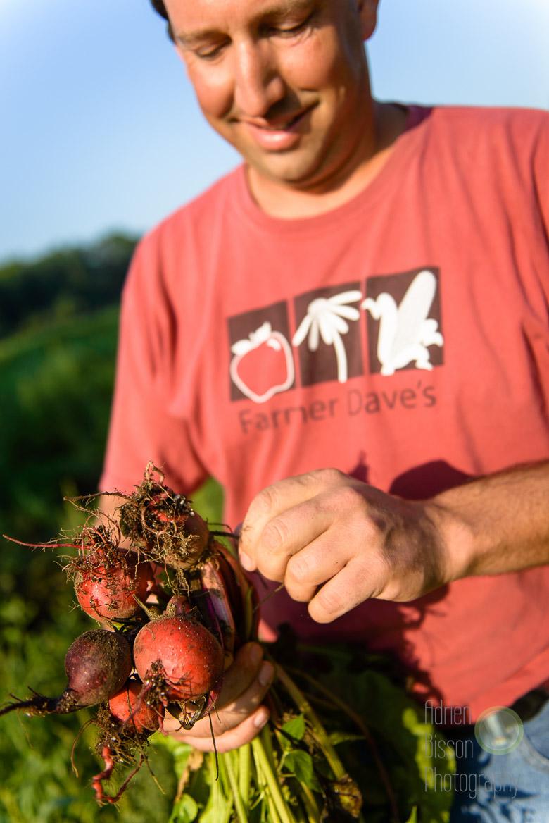 Farmer Dave checks the progress of his crop
