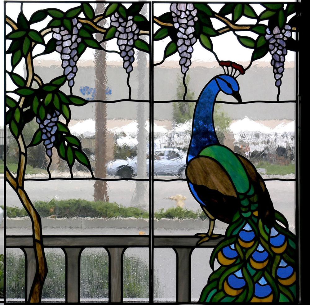 peacock-wisteria.jpg