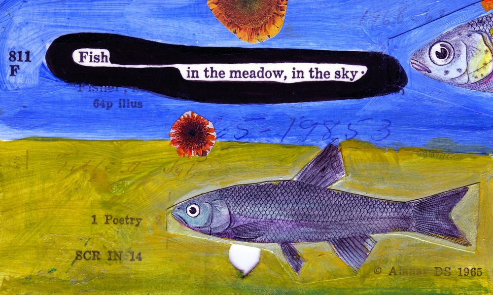 fish in the meadow,087.jpg