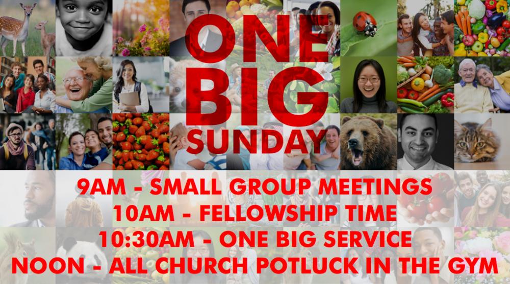 2017 One Big Sunday slide with details.jpg.png